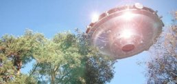 news-ufo-trees